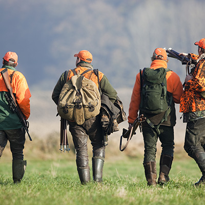 Chasse en groupe